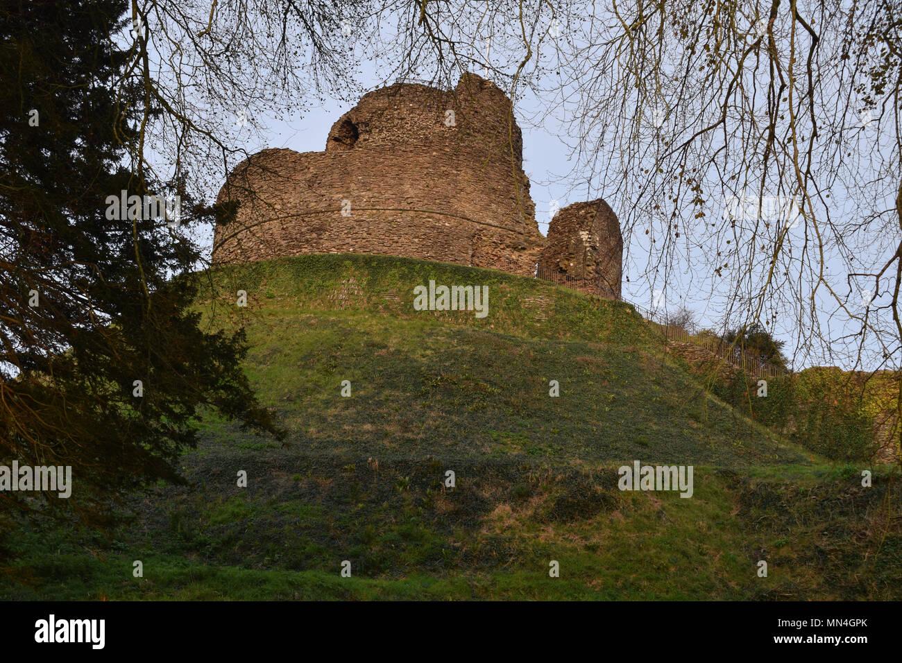 Launceston Castle - Stock Image