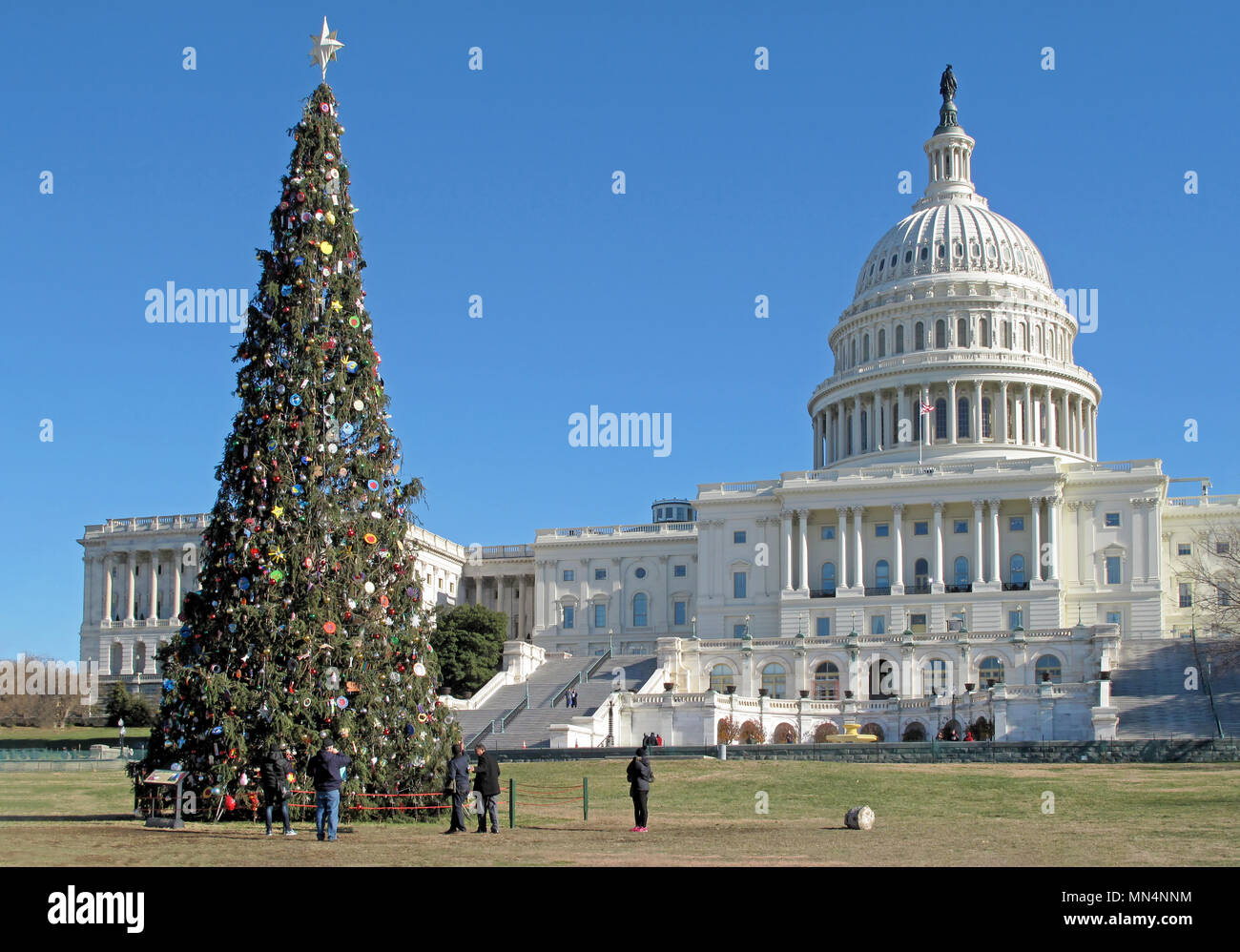 Christmas In Dc.Christmas Tree In Front Of United States Capitol Building In
