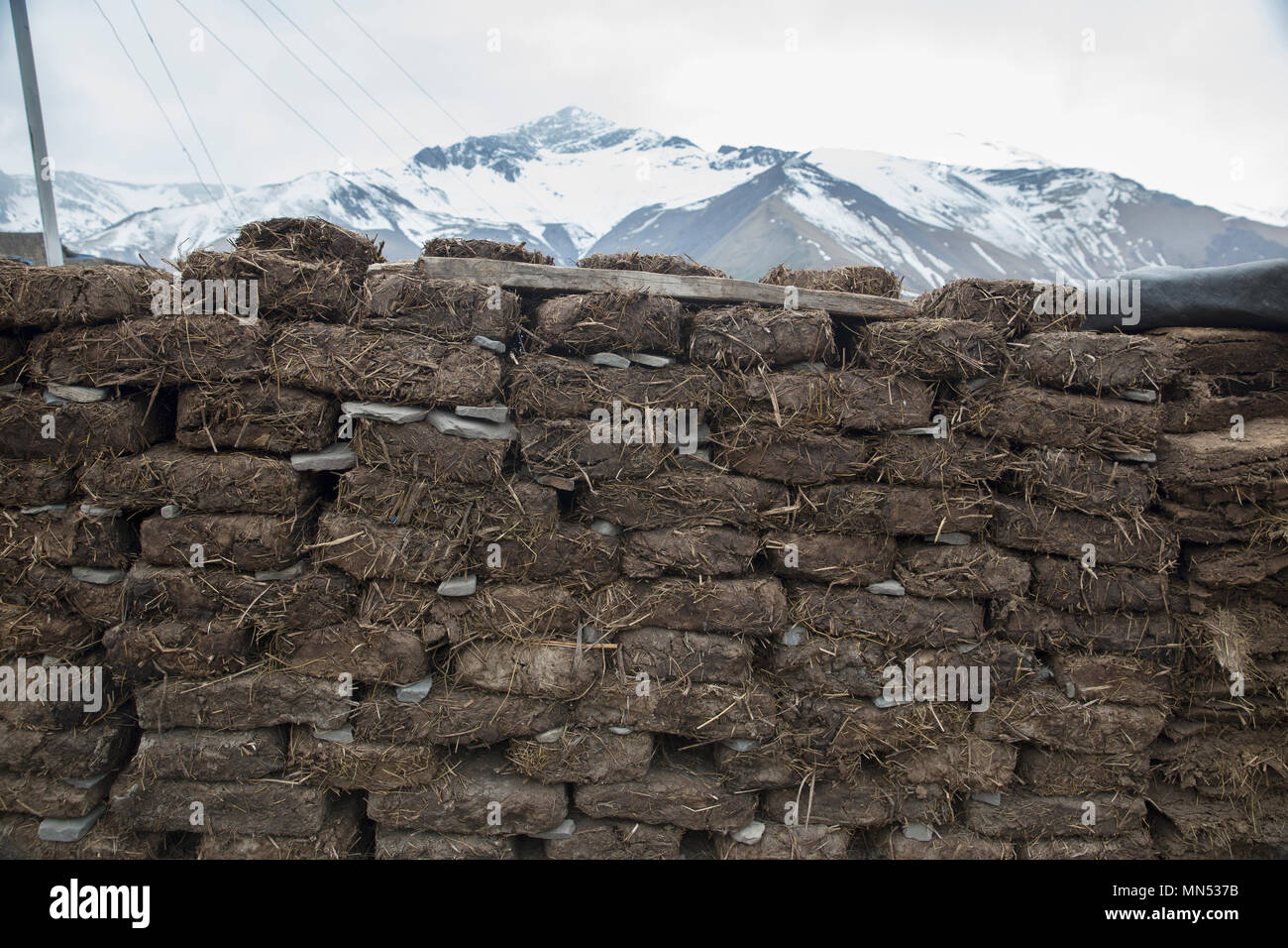 Bricks for heating of premises from manure and hay - Stock Image