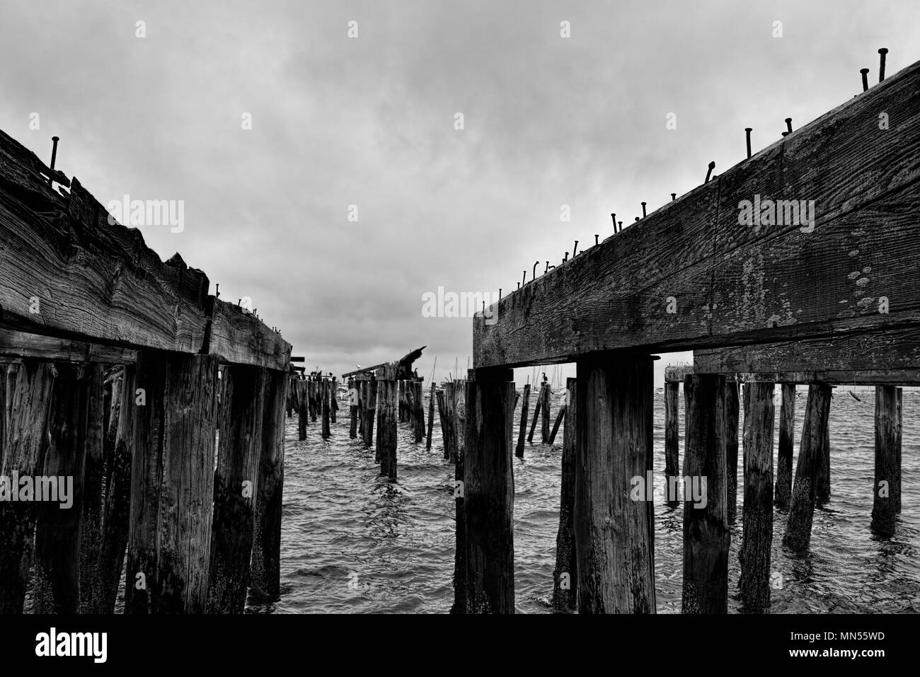 Old Pier that's in disrepair with nails sticking out of the top. - Stock Image