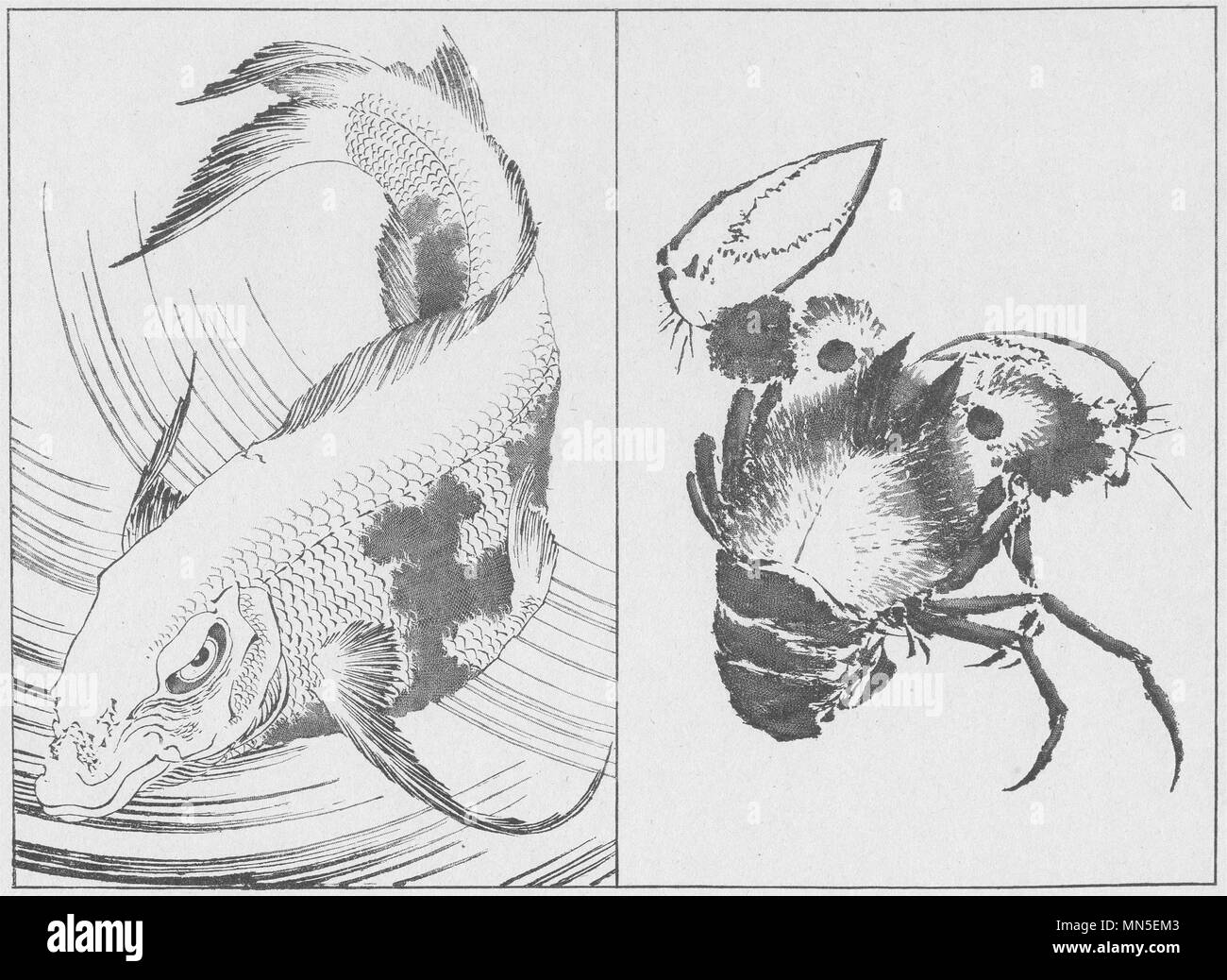 JAPAN. Fish and Crab. By Hokusai 1890 old antique vintage print picture - Stock Image
