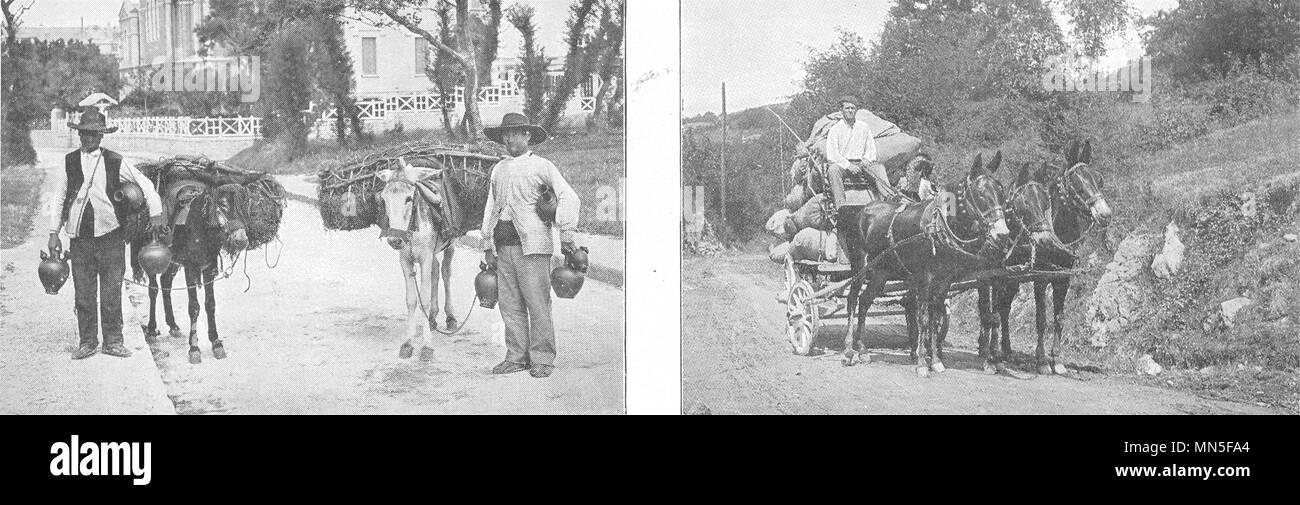 PYRÉNÉES- ATLANTIQUES. Pays Basque. Merchants Gargoulettes; Attelage Mules 1900 - Stock Image