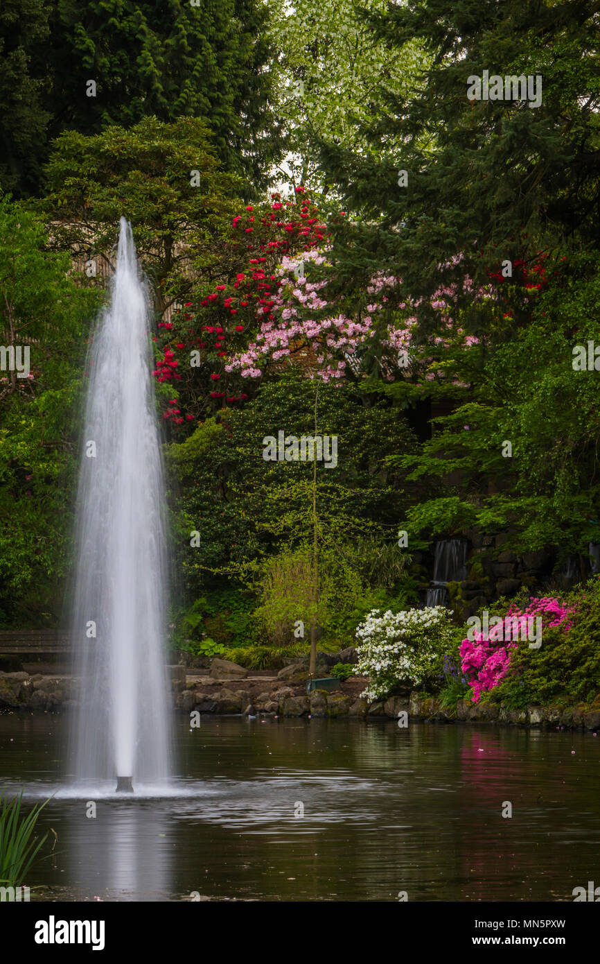 A decorative water fountain in a pond at the Crystal Springs Rhododendron Gardens in Portland, Oregon, USA. - Stock Image