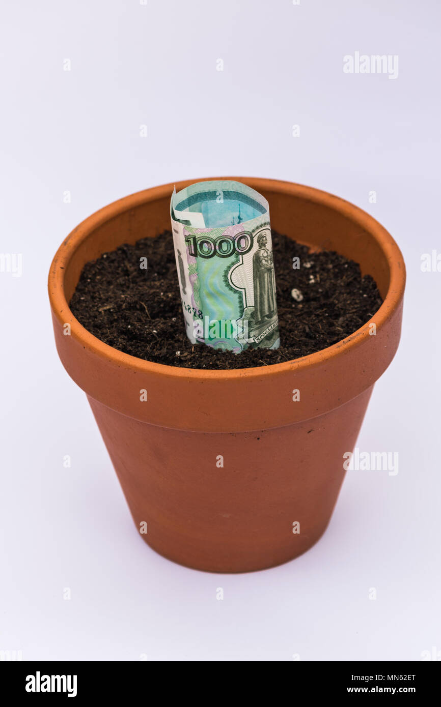 ceramic pot with earth and russian rubles  bill growing - Stock Image