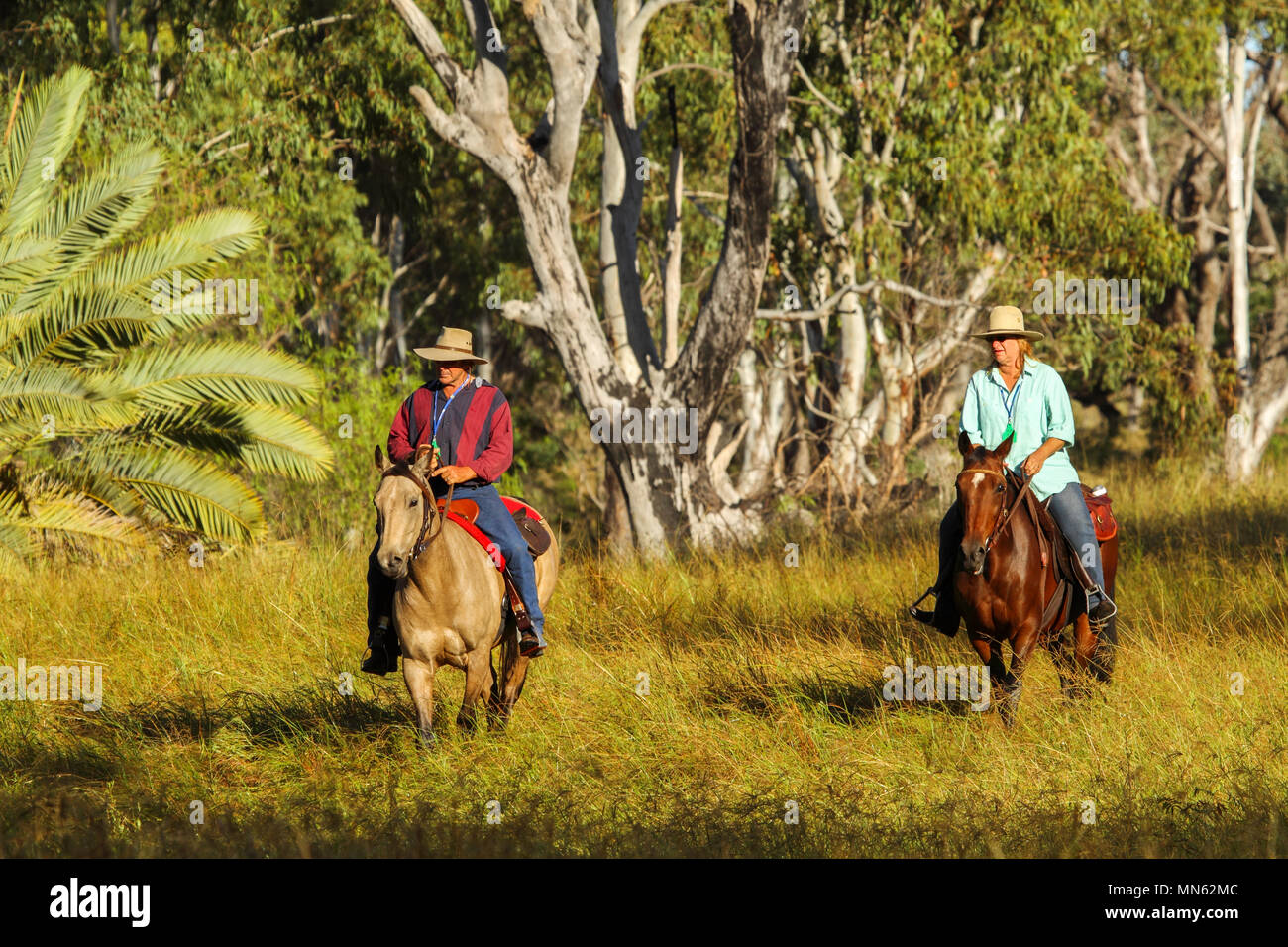 Husband and wife riding horses on a farm. - Stock Image