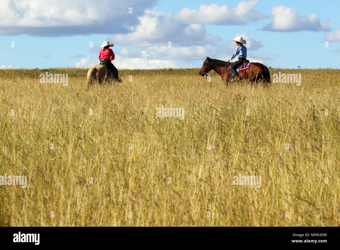 Two pre-teen girls riding horses in tall grass on a farm. - Stock Image