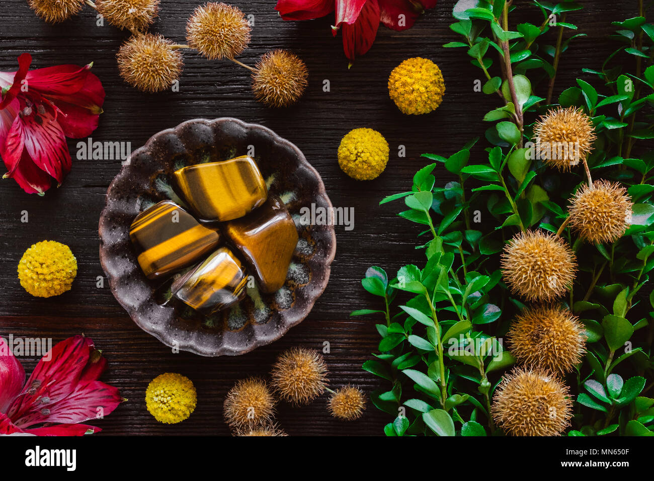 Tiger's Eye Stones with Plants and Flowers on Dark Wood Table Stock Photo