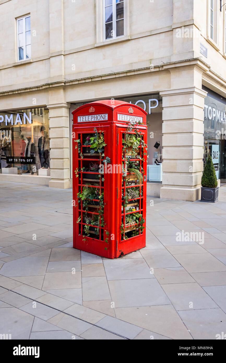 Flower filled red telephone kiosk in Southgate Street shopping centre taken in Bath, Somerset, UK on 18 January 2018 - Stock Image