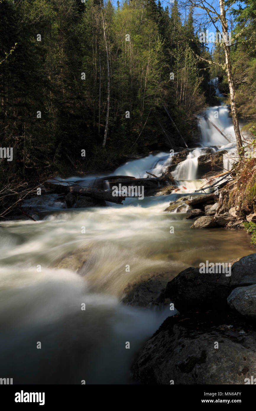Beautiful slow motion waterfalls cascading down forest hillside in Waterton Lakes National Park, BC Canada Creative nature scenic landscape photograph - Stock Image