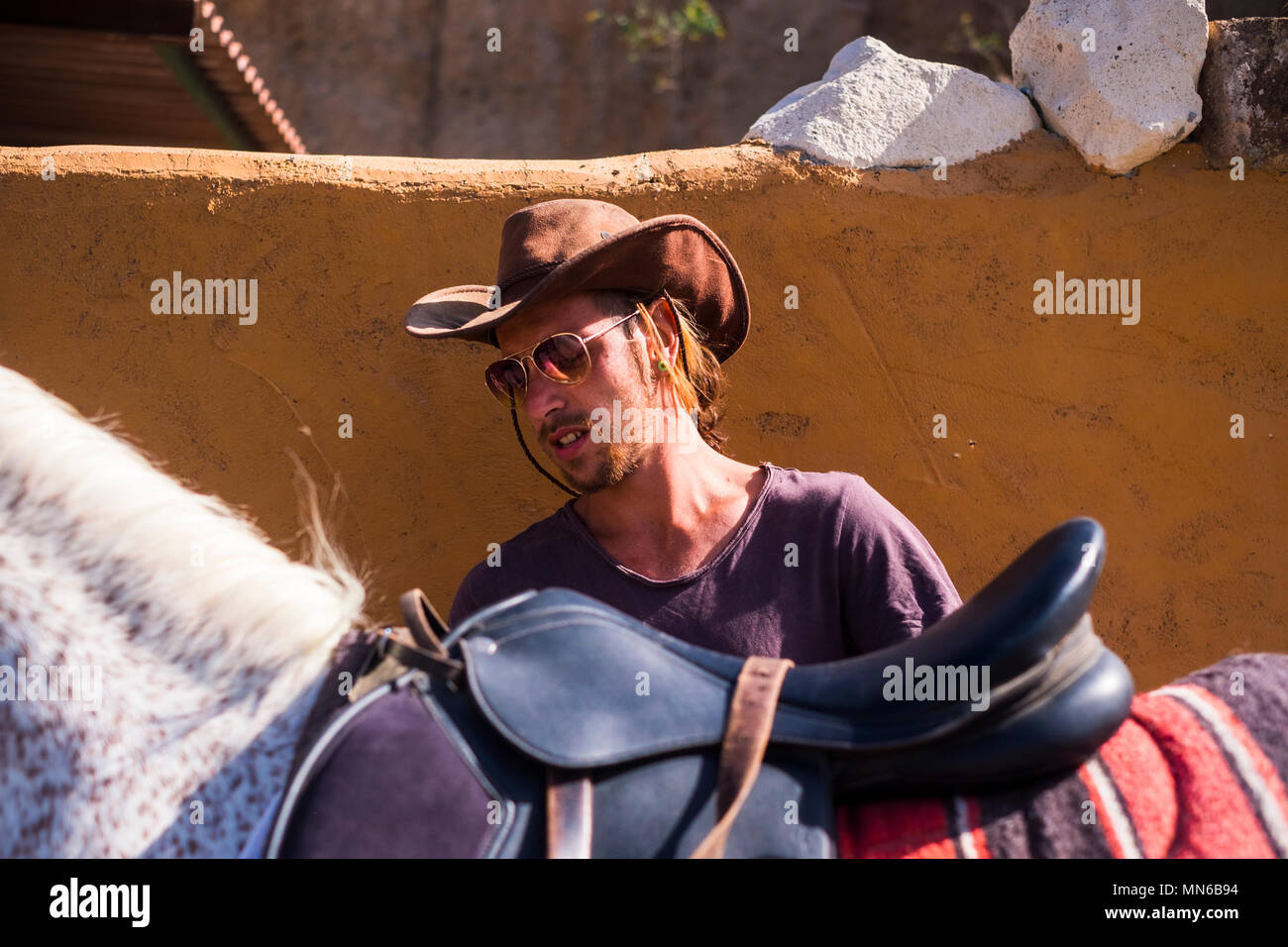 blonde young man prepare a horse to go on trekking excursion with cowboy hat. alternative lifestyle leisure activity under the sun in the summer. coun - Stock Image
