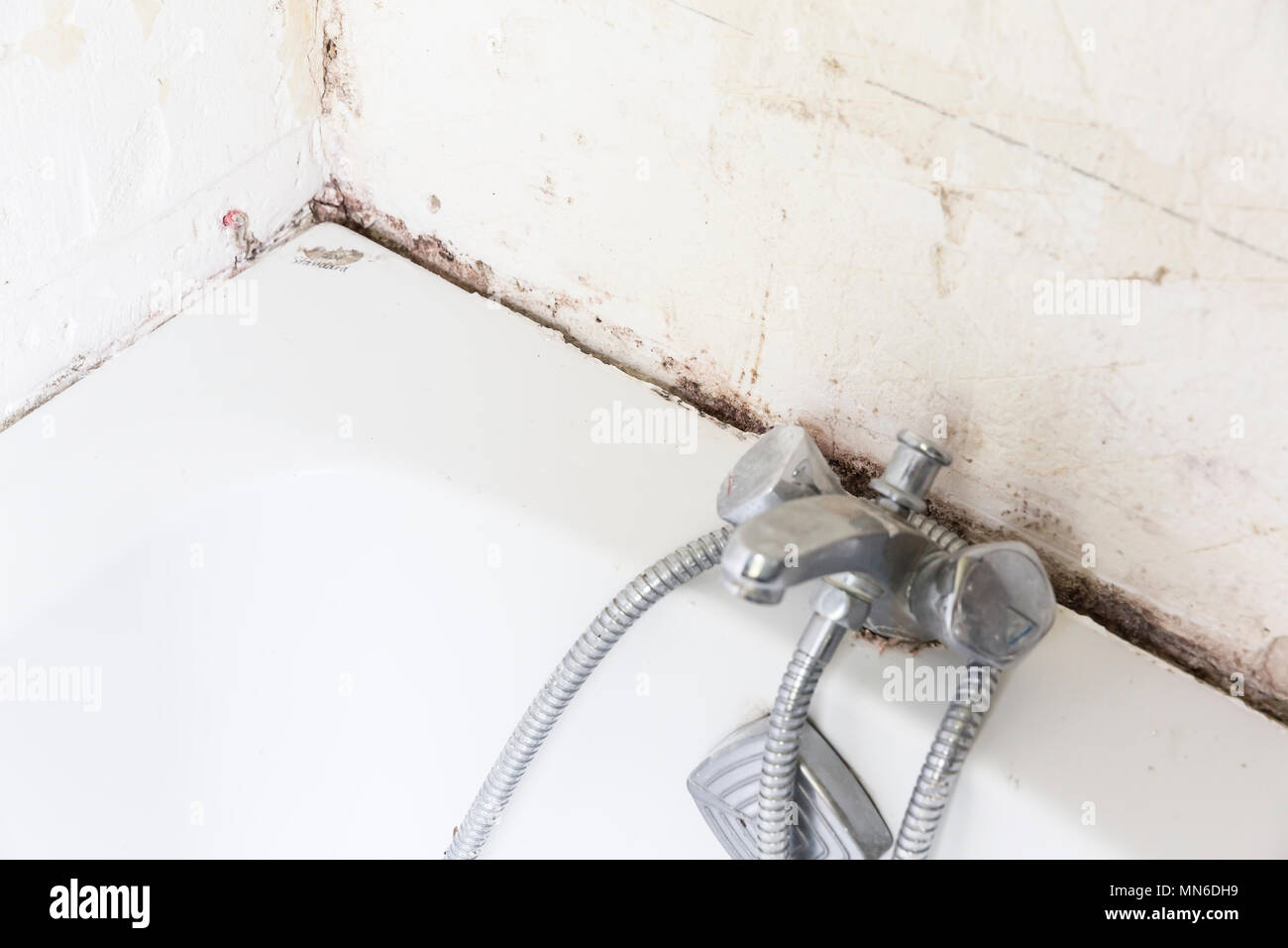 Disgusting home shower bathroom tile sealant with mould and mildew ...