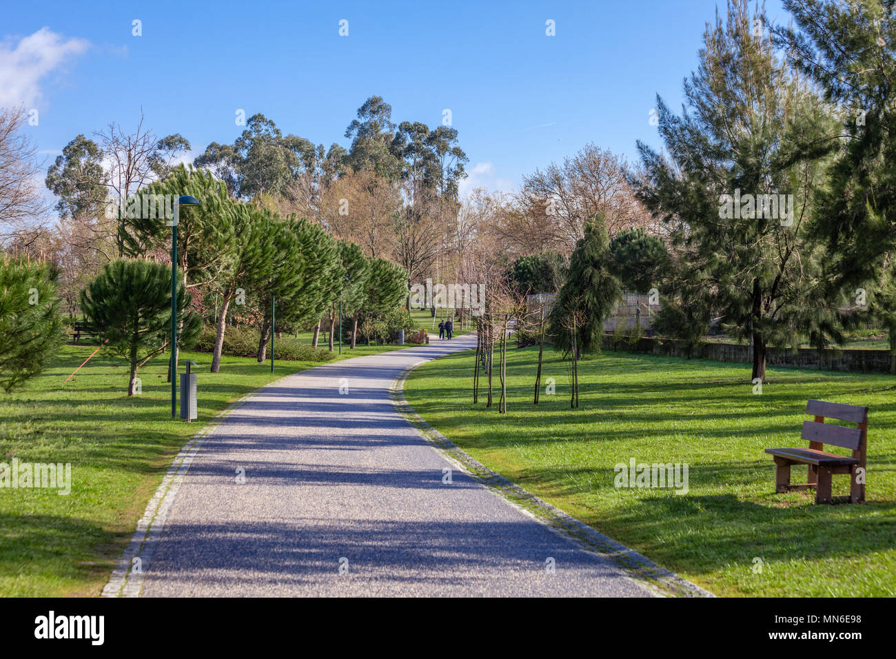 Empty path, track, trail or pathway through the trees and green grass lawn in Parque da Devesa Urban Park. Vila Nova de Famalicao, Portugal - Stock Image