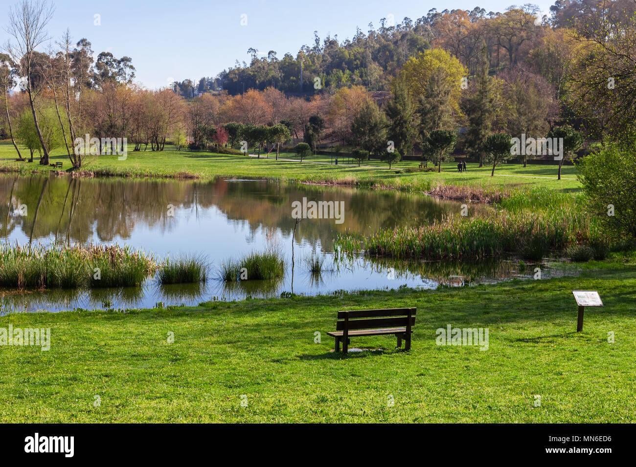 Superb Garden Bench Overlooking Lake Or Pond Of Parque Da Devesa Cjindustries Chair Design For Home Cjindustriesco