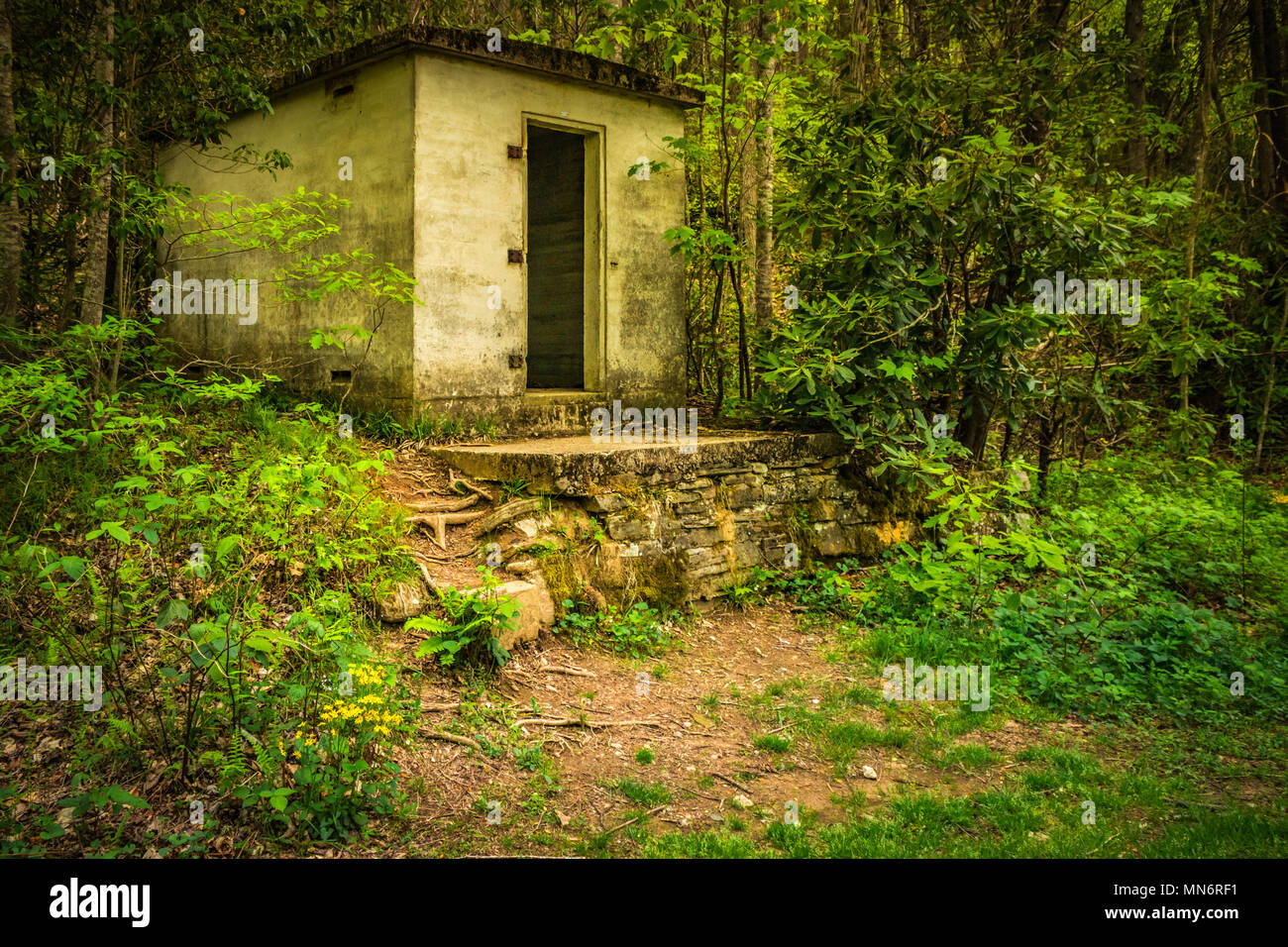 Abandoned Building in the Woods - Stock Image