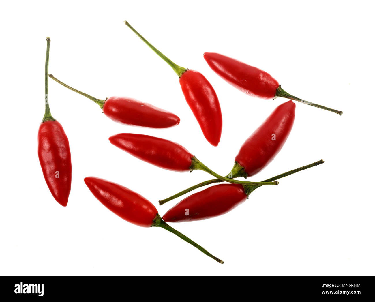 The Birds Eye, or Thai Chili, is a small sized chili pepper cultivar of the species Capsicum annuum. It is very hot (piquant) with a floral aroma, com - Stock Image