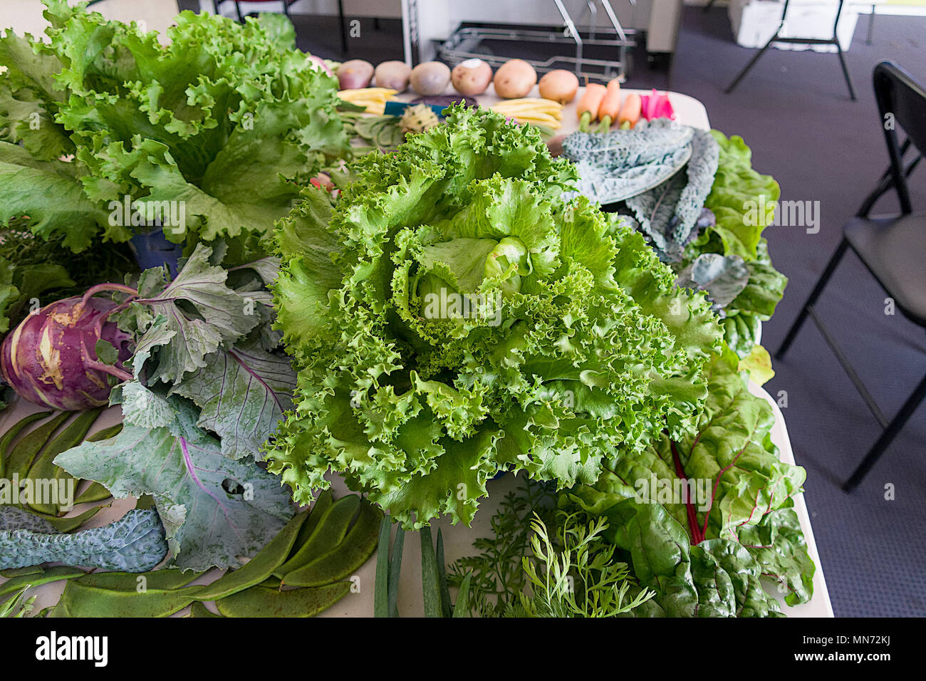 On display at a local shopping centre, the publice were very interested to see what can be produced in back-yards with a little effort. - Stock Image