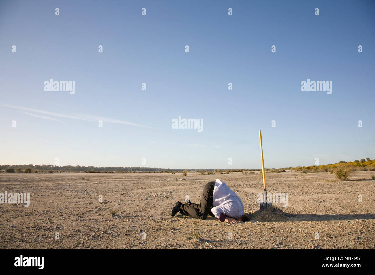A professional with his head buried in the sand. - Stock Image