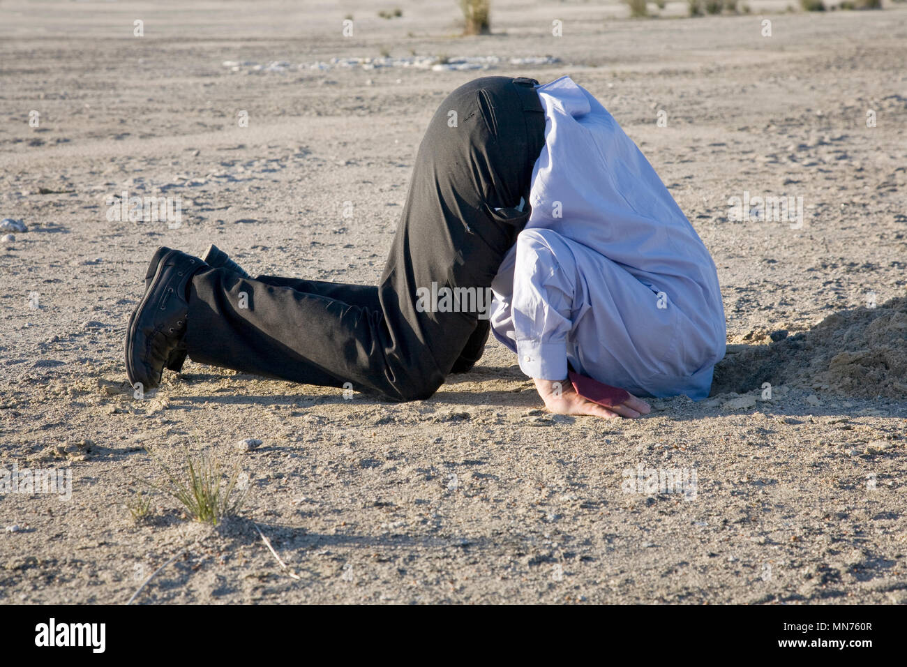 A professional with his head buried in the sand. Stock Photo