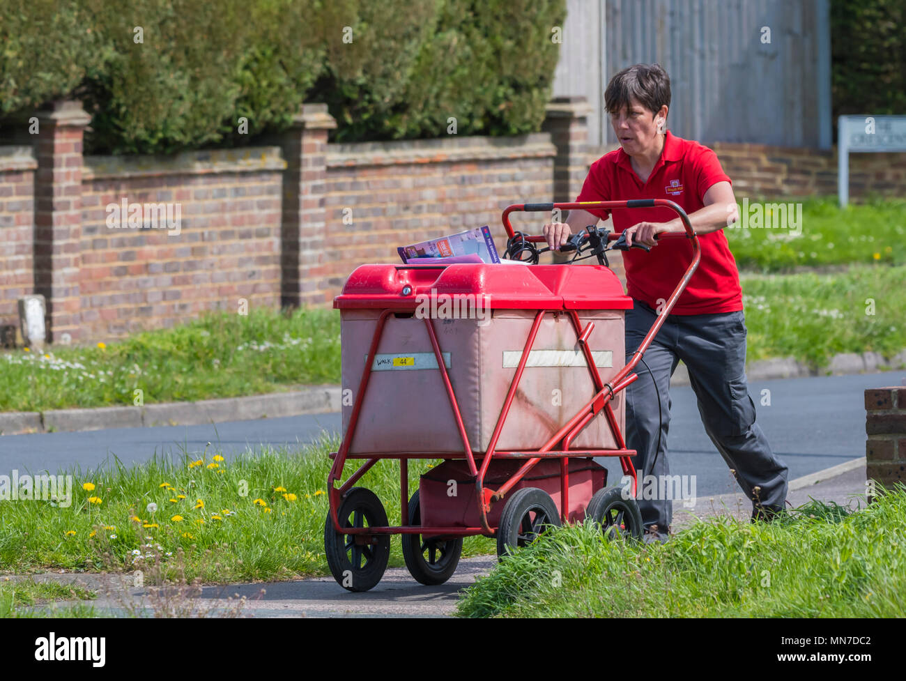 Woman pushing a Royal Mail cart while delivering letters and post in England, UK. - Stock Image