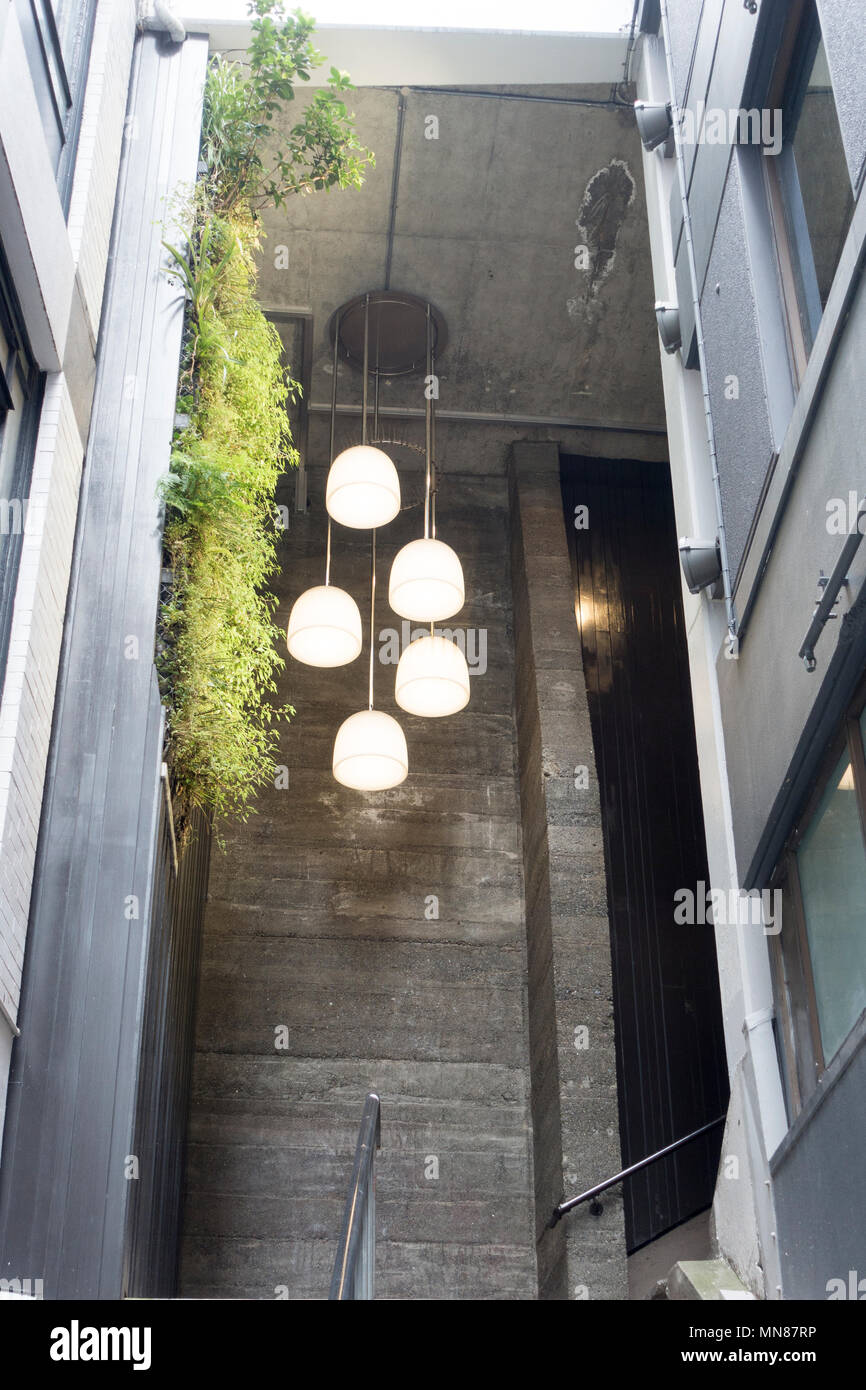 Modern Lighting And Vertical Garden In Stairs Leading To The Terrace,  Wellington, New Zealand