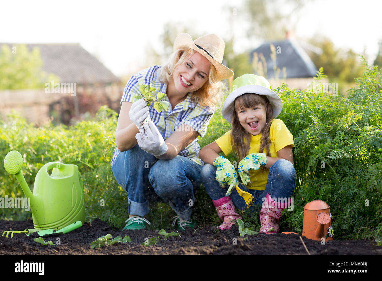 Mother and daughter planting strawberry seedlings in summer time Stock Photo