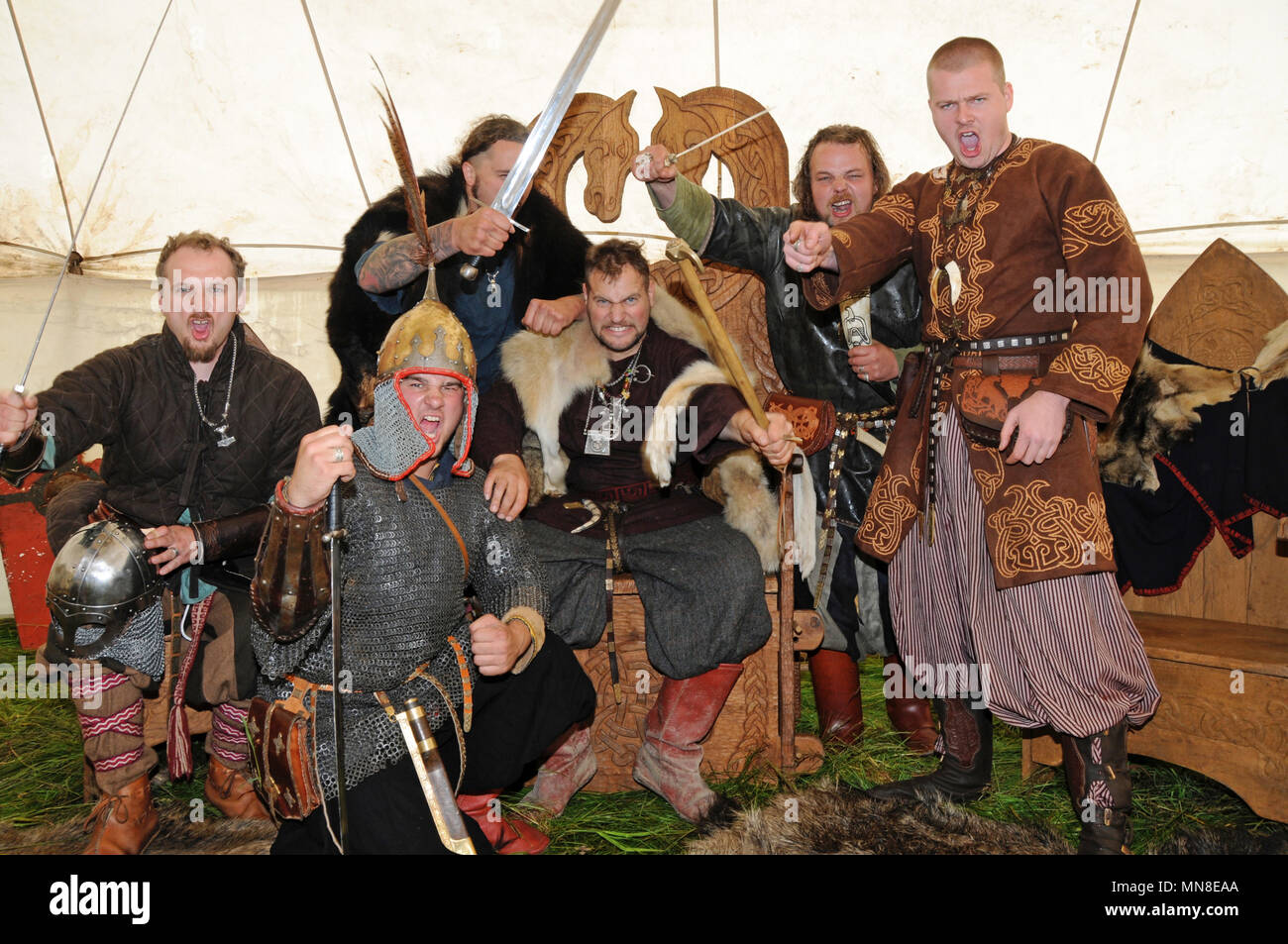 Group of men dressed up as viking in tent roaring and gesturing to the camera as reenactment - Stock Image