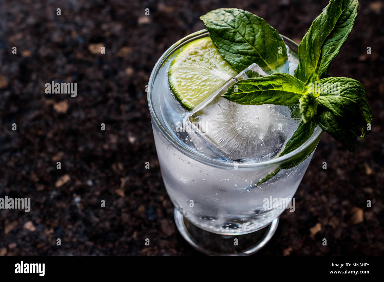 Vodka or Gin Tonic Cocktail with lime, mint leaves and ice. Beverage Concept. - Stock Image