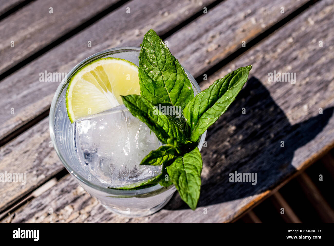 Vodka or Gin Tonic Cocktail with lime, mint leaves and ice at the garden (natural light). Beverage Concept. - Stock Image
