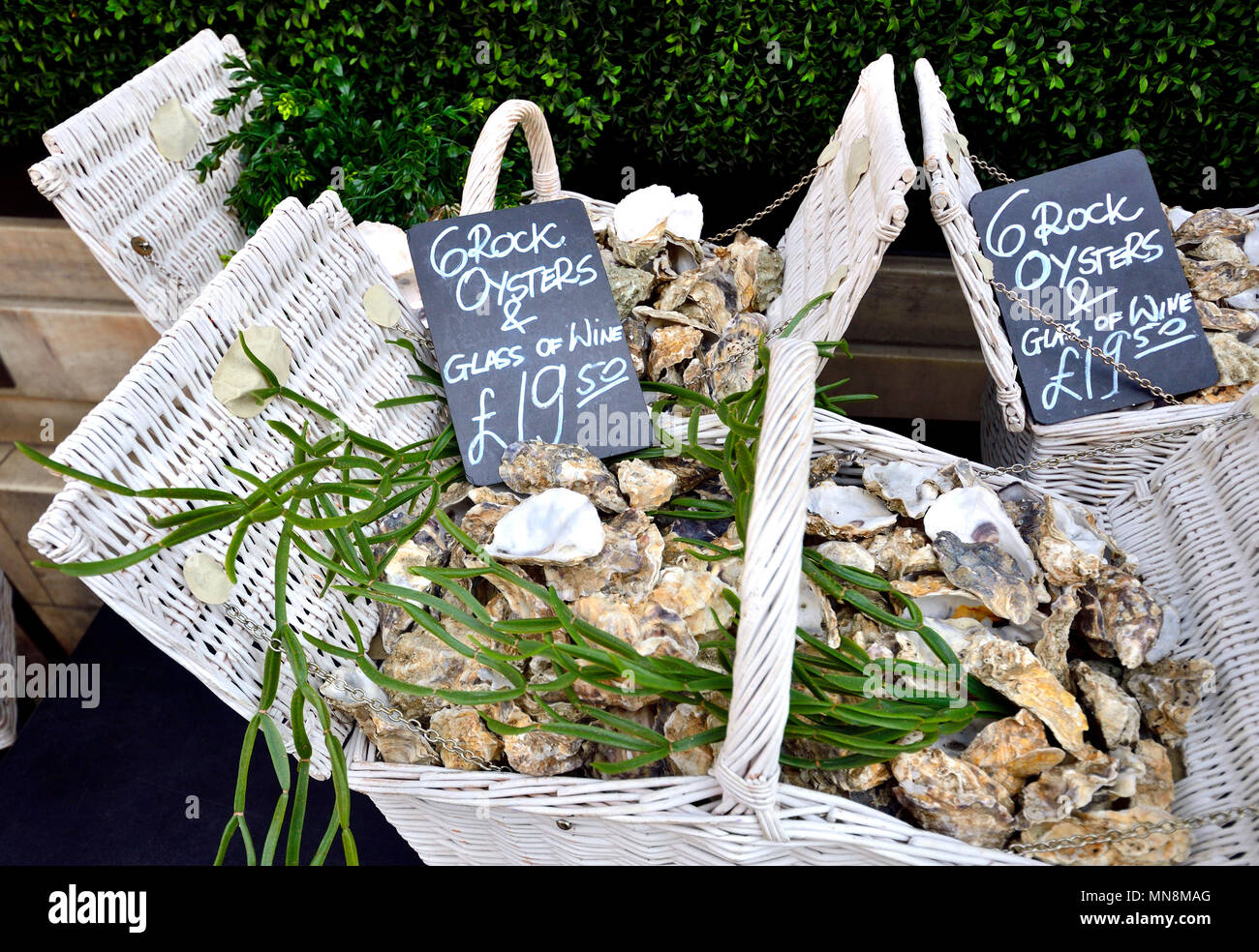 London, England, UK. Baskets of oysters outside the Caviar House and Prunier, 161 Piccadilly - Stock Image