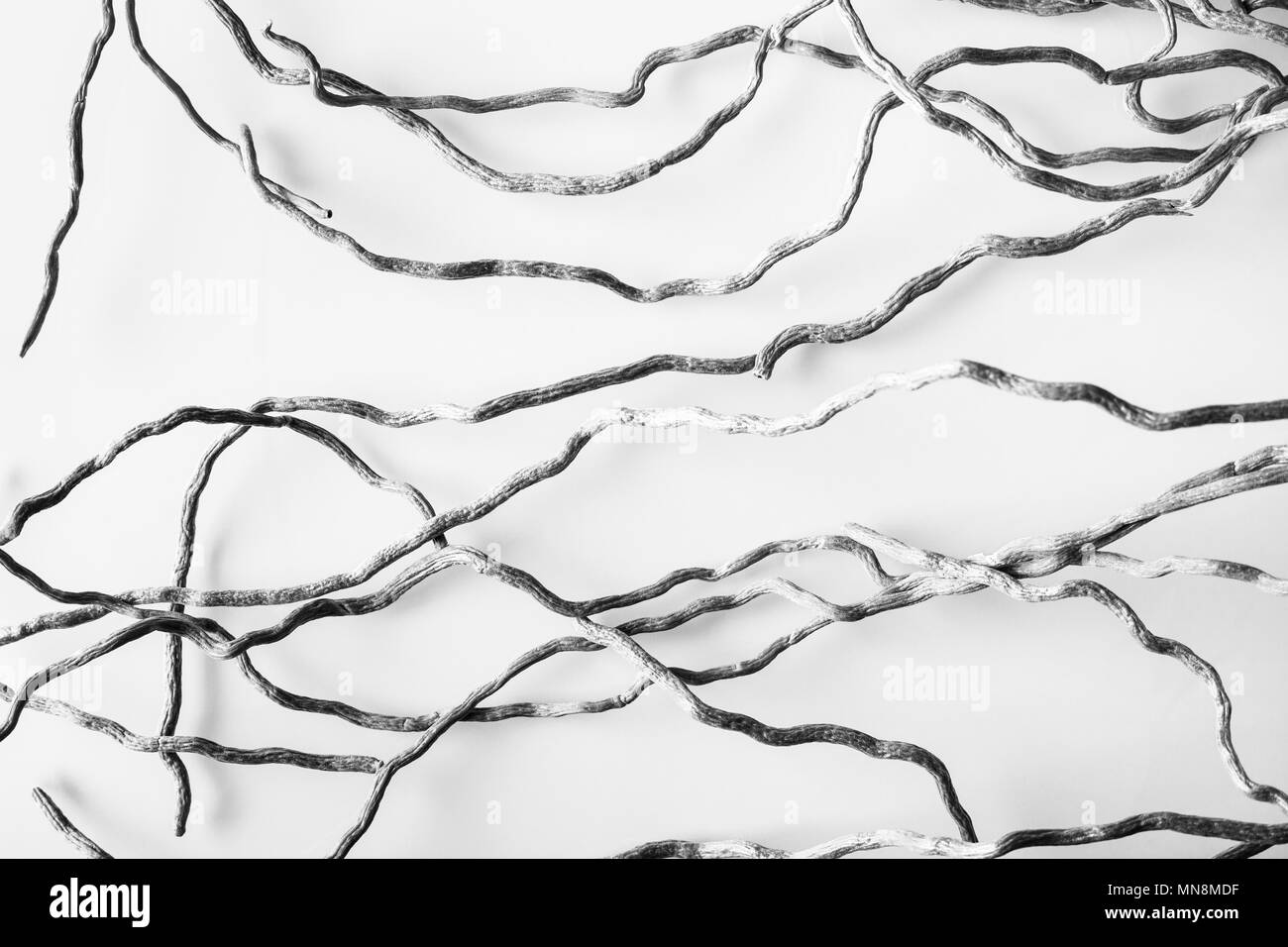 Wavy Lines Black And White Stock Photos Images Alamy