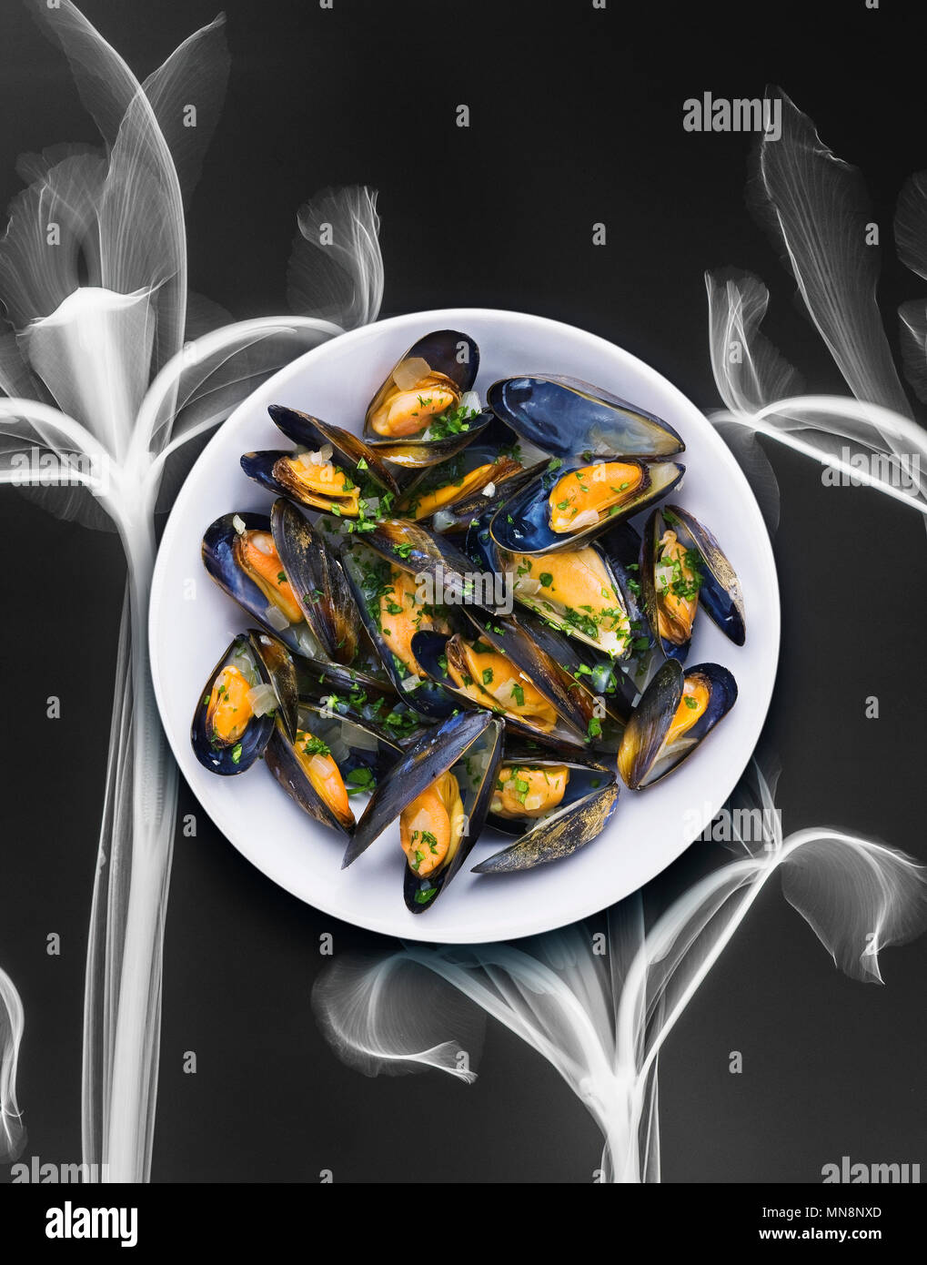 Cooked mussels served in a bowl. Over the top view - Stock Image