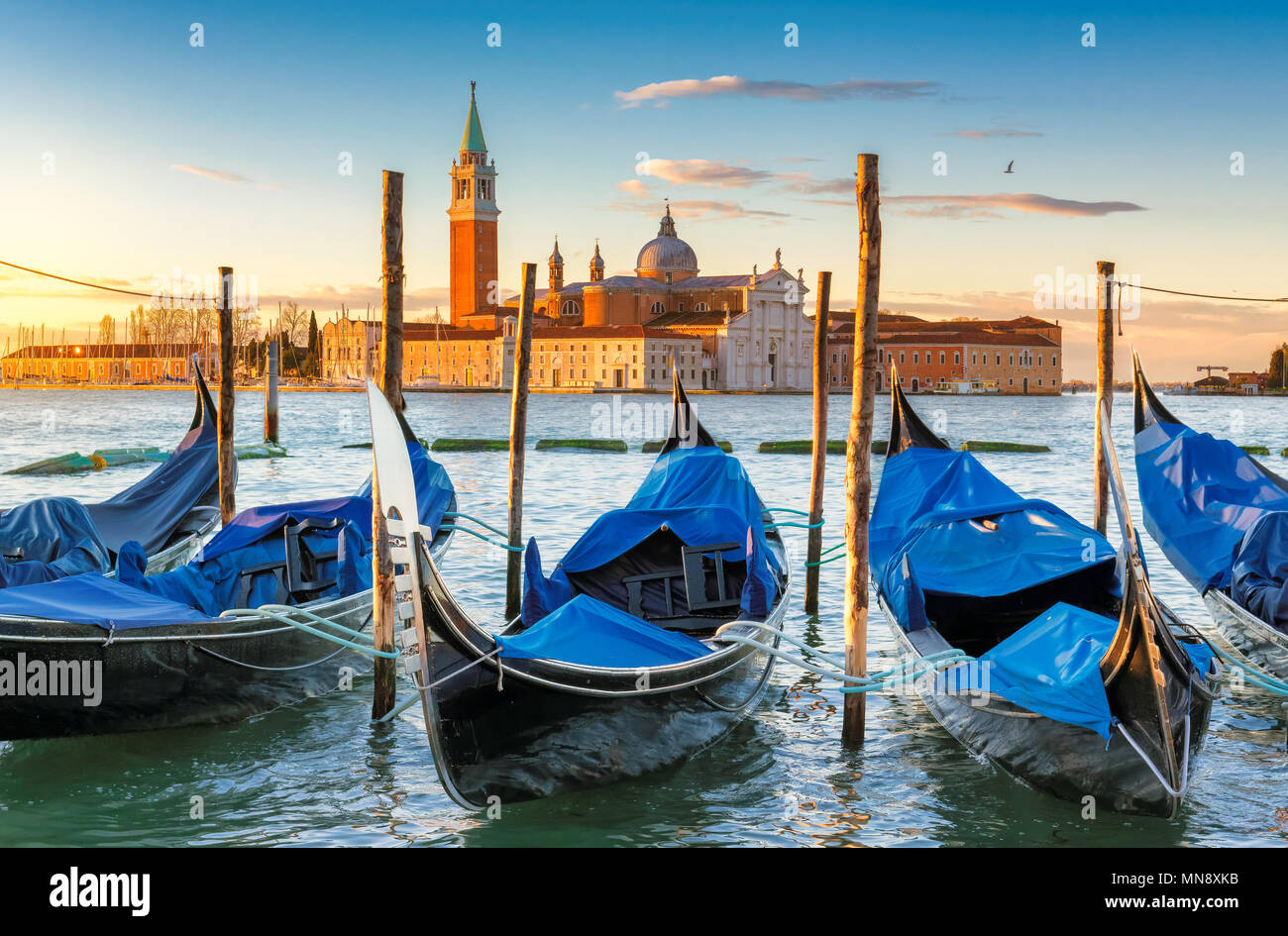 Venice gondolas near San Marco square at sunrise, Grand Canal, Venice, Italy. Stock Photo