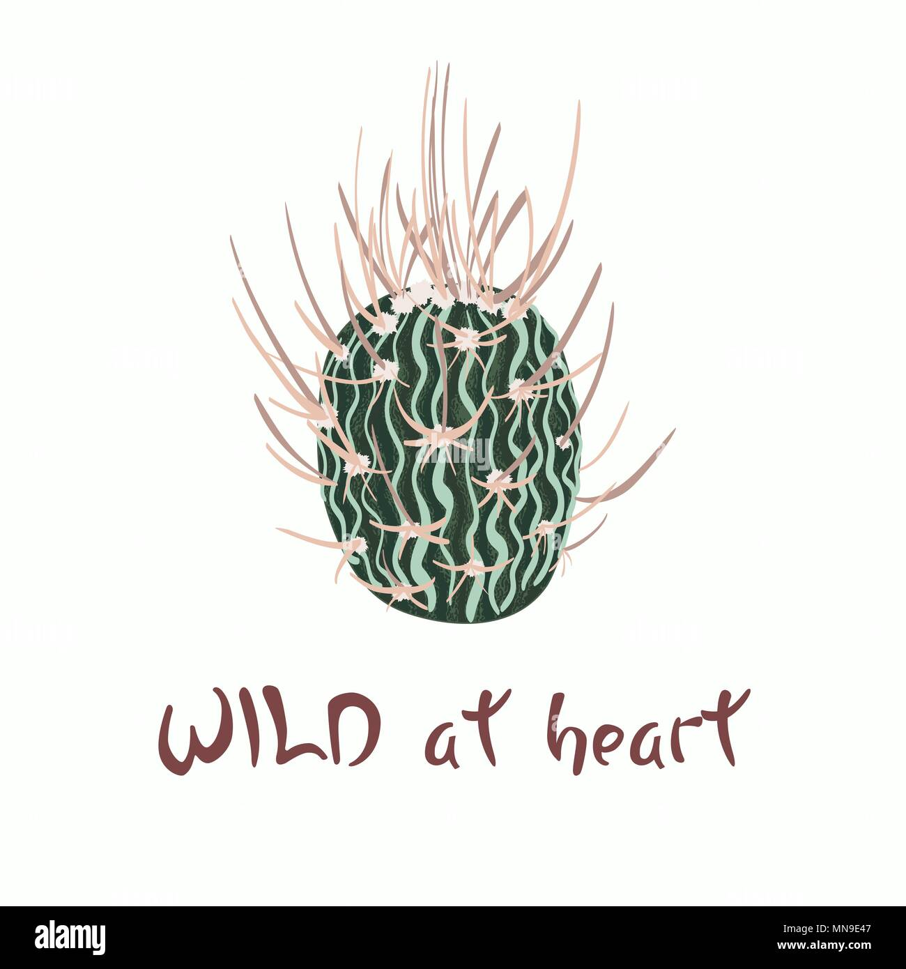 Hand written lettering Message slogan Wild at heart with cactus image - Stock Image