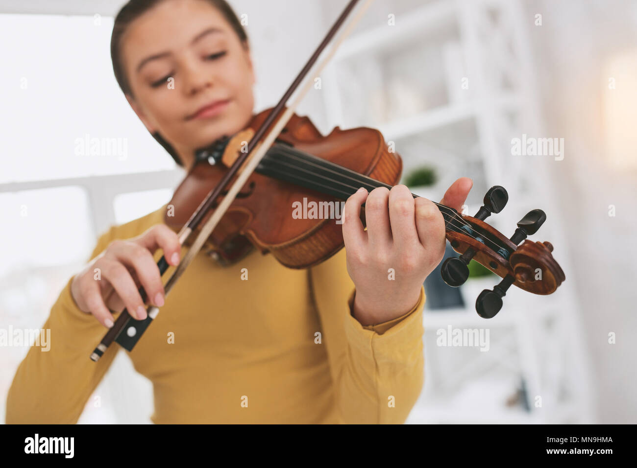 Focused photo on female hands that holding violin - Stock Image