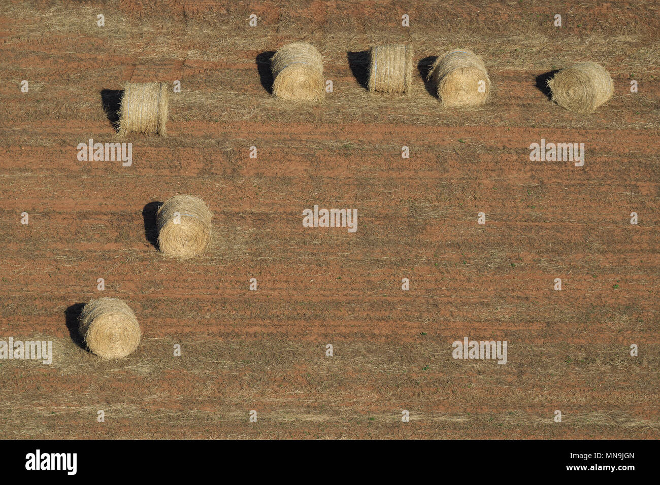 Royalty-Free Stock Photo Download Landscape With Hay Bales, Mallorca, Spain Stock Photo - Image of growth, landscaped: 55986282 - Stock Image