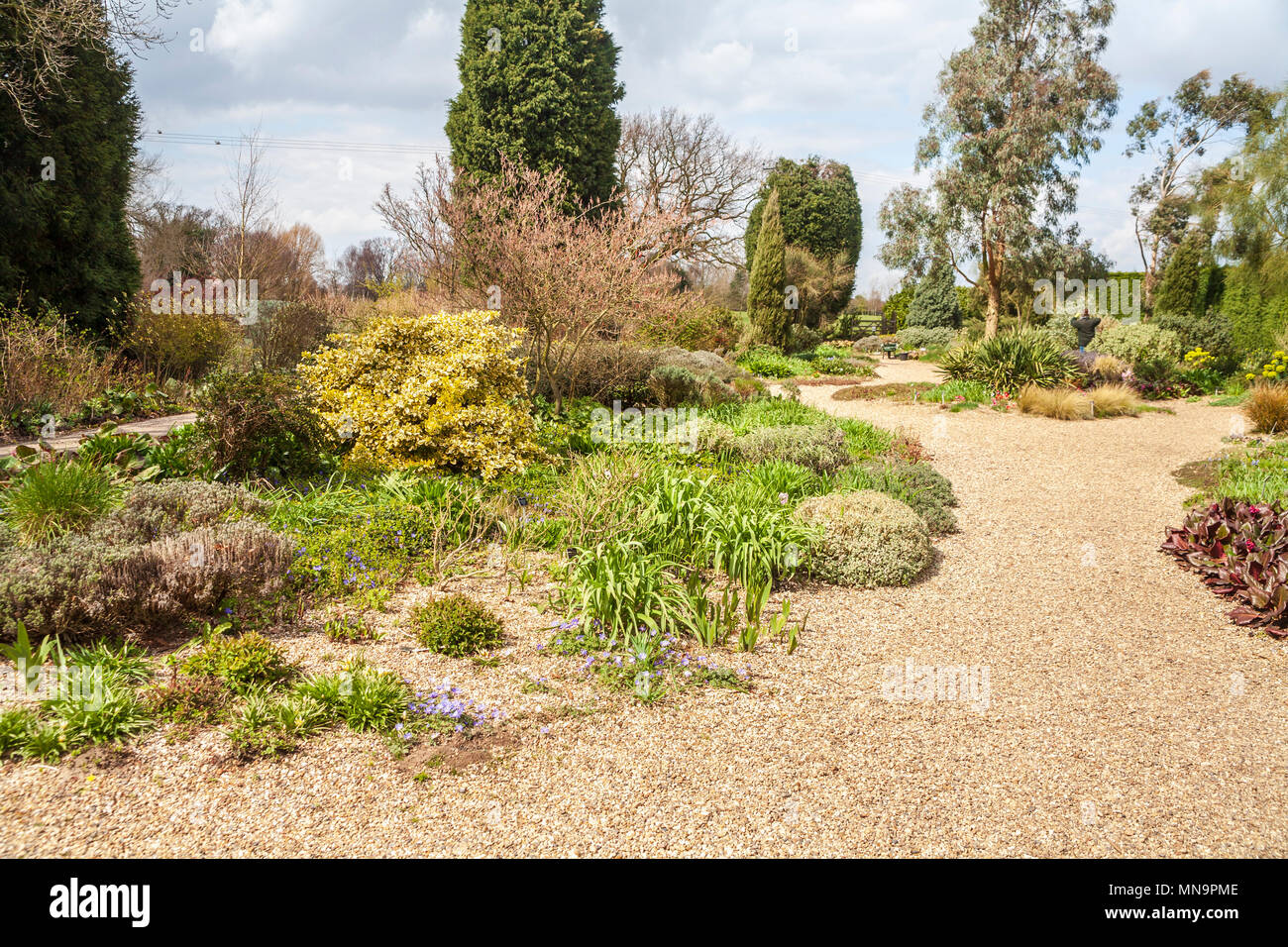 Landscaped Garden And Paths: The Dry Gravel Garden For ...