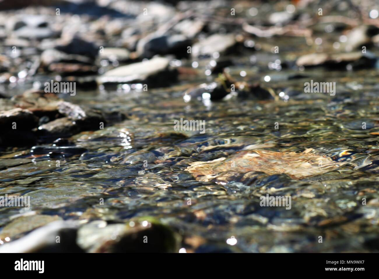 Beautiful close up of fresh clear water rippling over peddles with blurred background - Stock Image