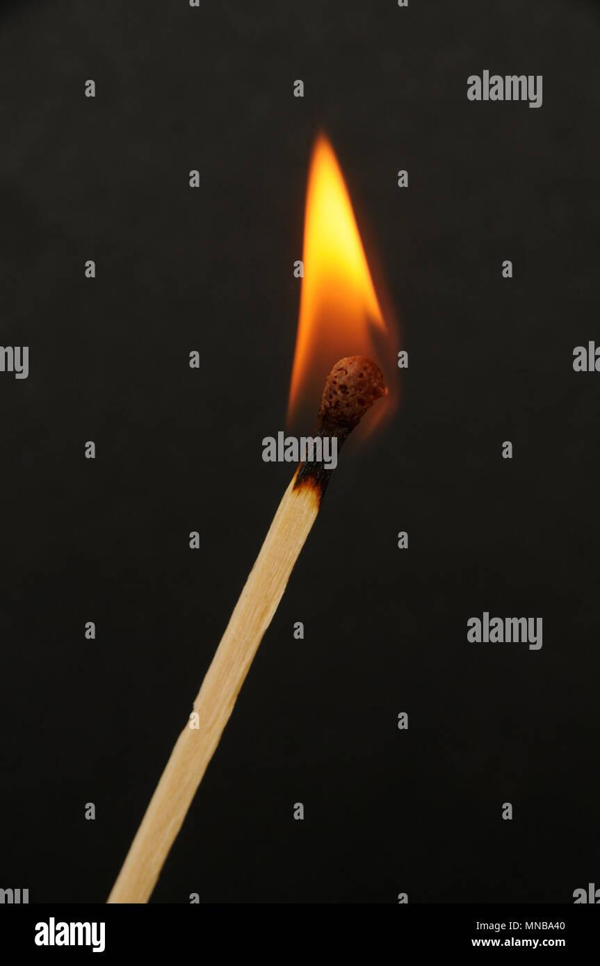 Fire burning single match on a black background - Stock Image