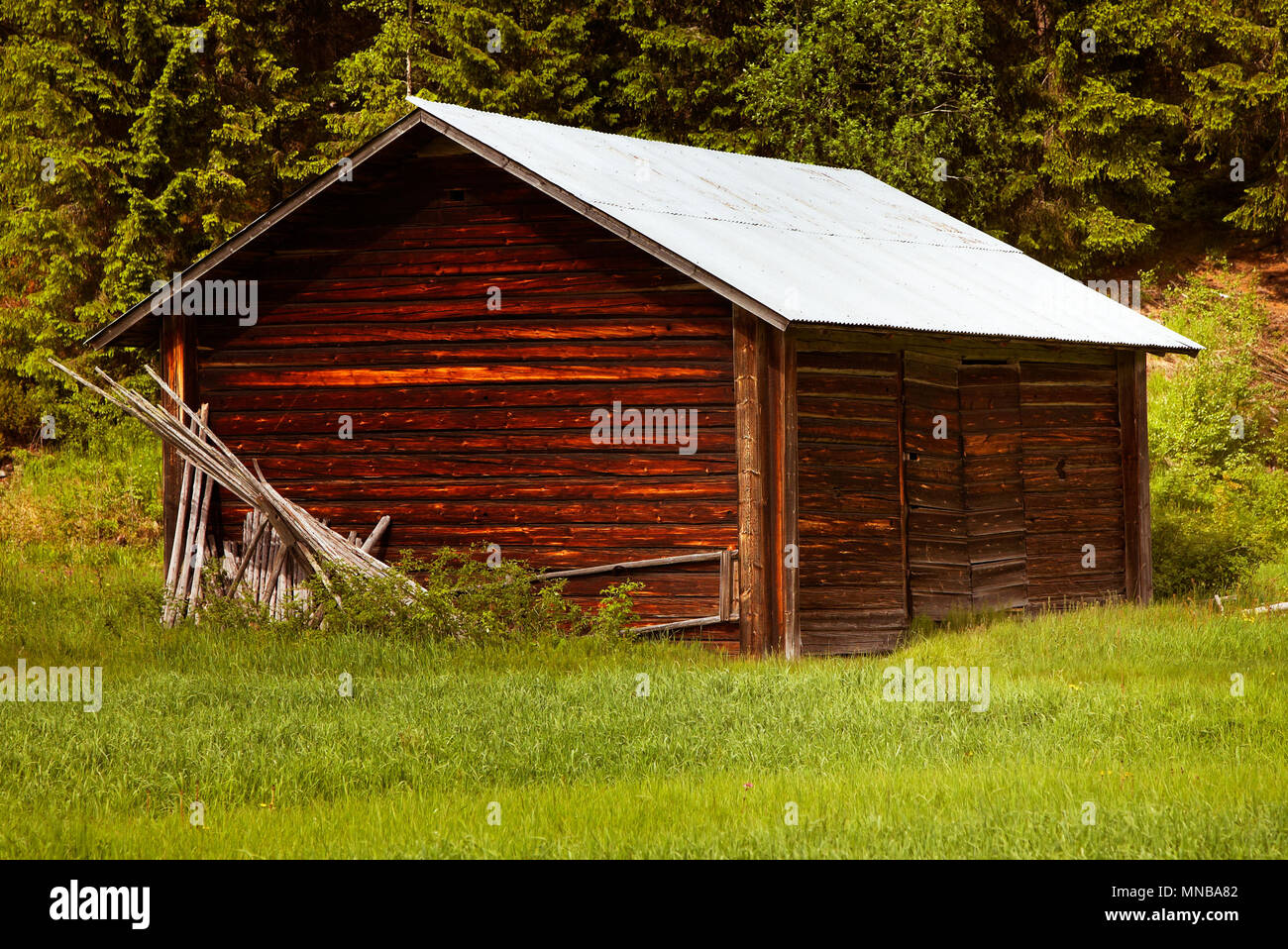 A small typical Swedish barn in a meadow in the winter storage of hay in the northern parts of Sweden. This barn is in Dalarna. - Stock Image