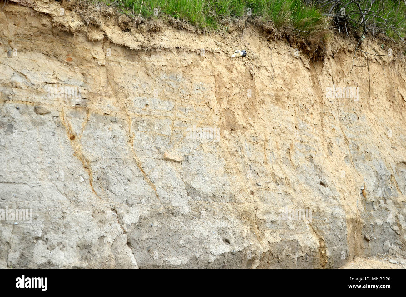 Slope with clay soil after a slide. This clay contains approx 3% iron, the yellowish areas of the slope has oxidated iron, while the dark areas have n - Stock Image