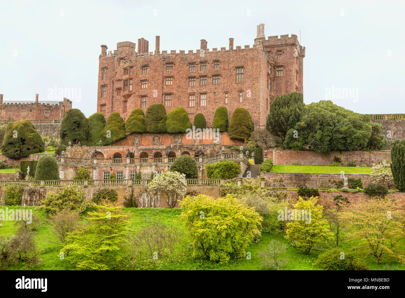 Powis Castle viewed from the south showing the distinctive terraced gardens, Welshpool, Powys, Gwynedd, Wales, United Kingdom. - Stock Image