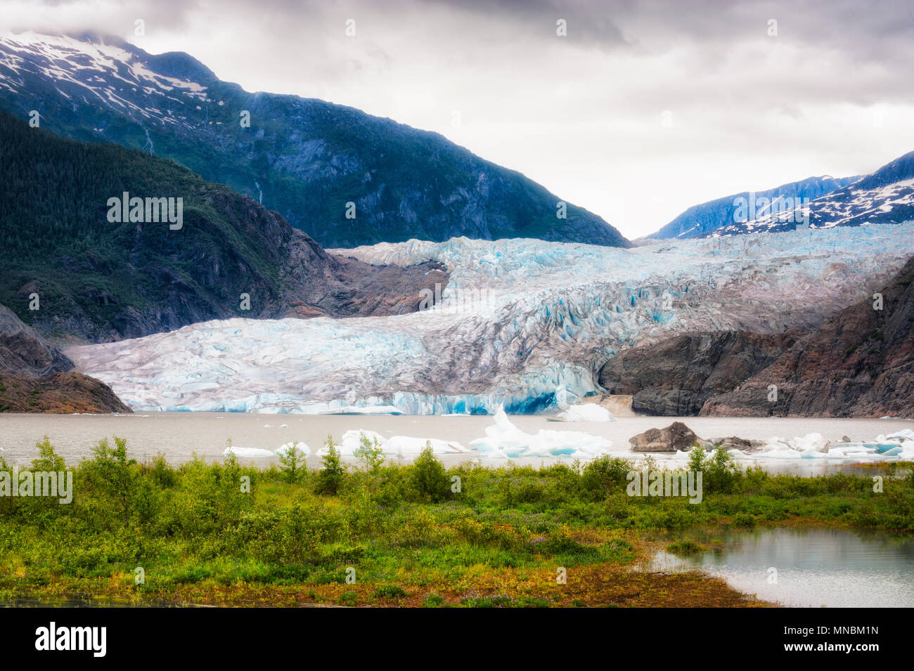 Mendenhall Glaier under cloudy skies in Tongass National Forest in Alaska. Proglacial lake with chunks of ice floating on it's surface forms at the gl - Stock Image