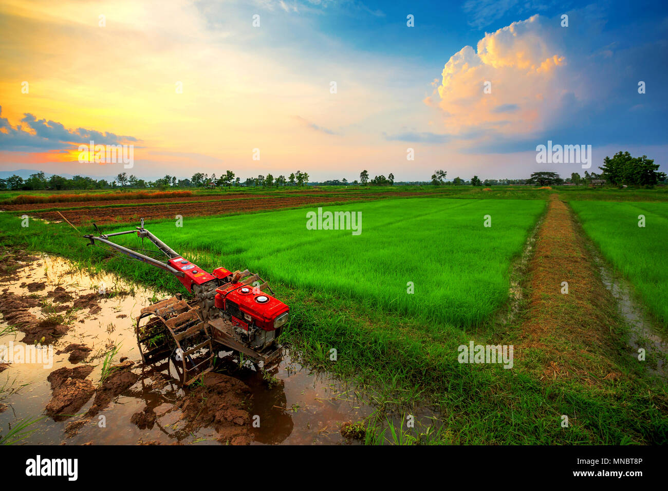Power Tiller Stock Photos & Power Tiller Stock Images - Alamy
