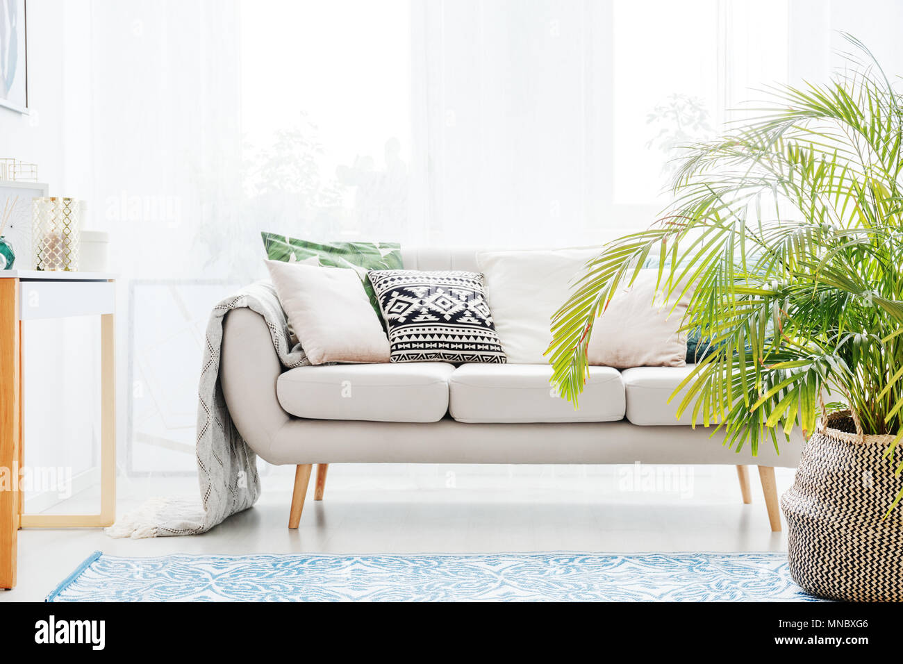 Plant Next To Beige Sofa With Bright Cushions In Living Room With Blue Carpet Stock Photo Alamy