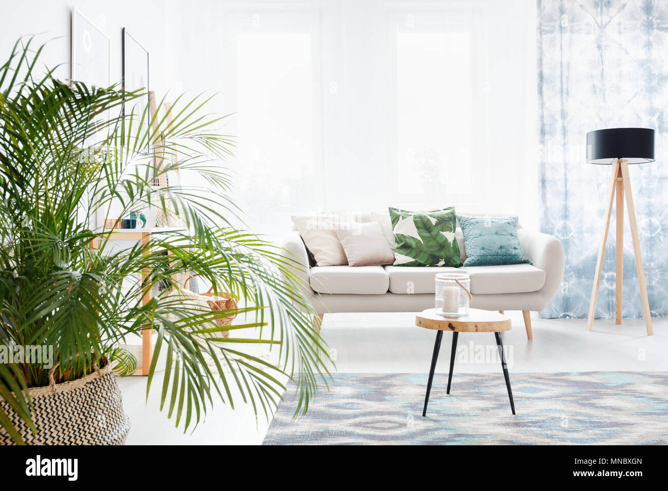 Plant in bright living room with wooden table on a carpet and lamp ...