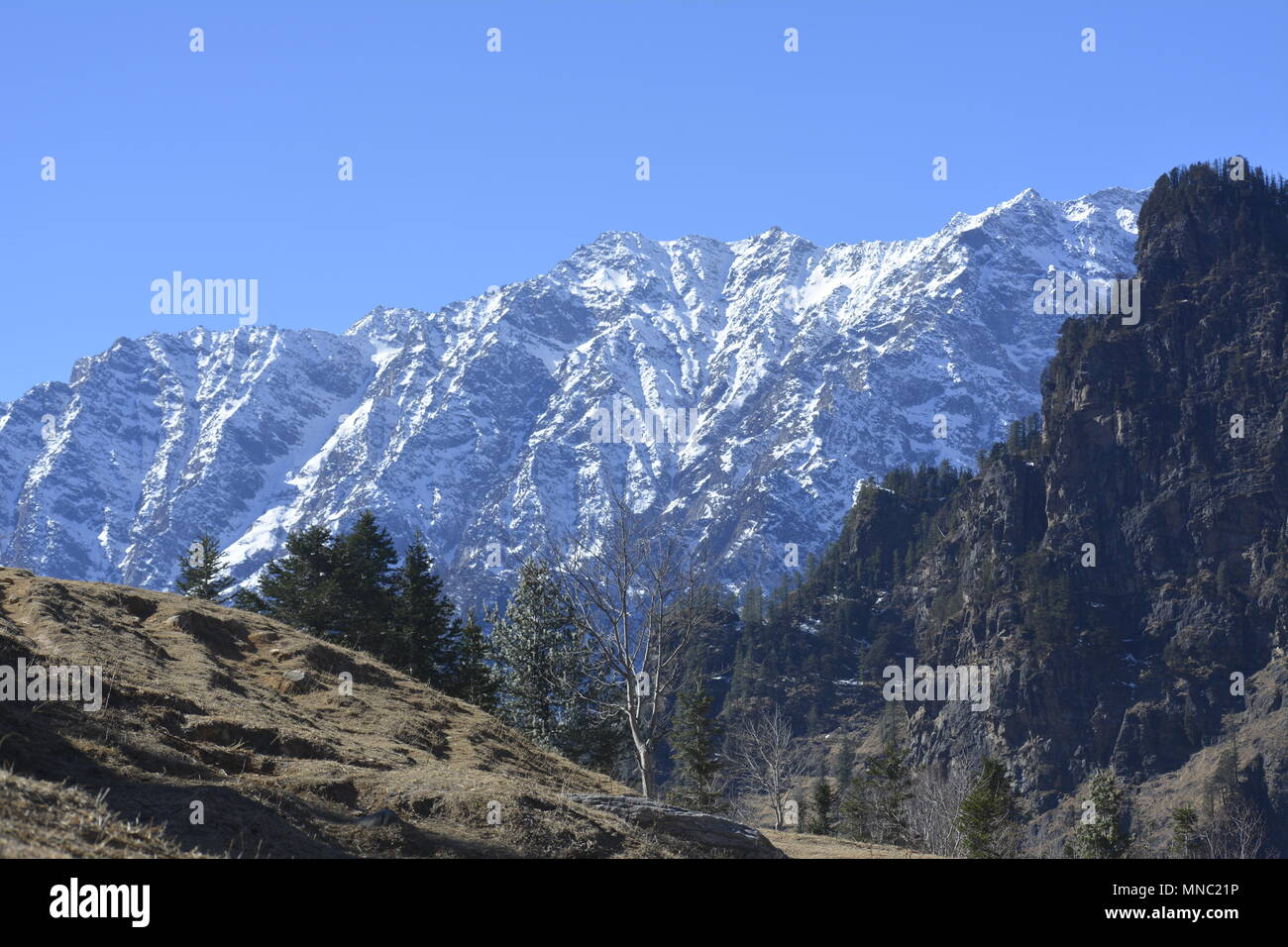 Manali is a resort town nestled in the mountains of the Indian state of Himachal Pradesh near the northern end of the Kullu Valley, at an 2050 m l - Stock Image