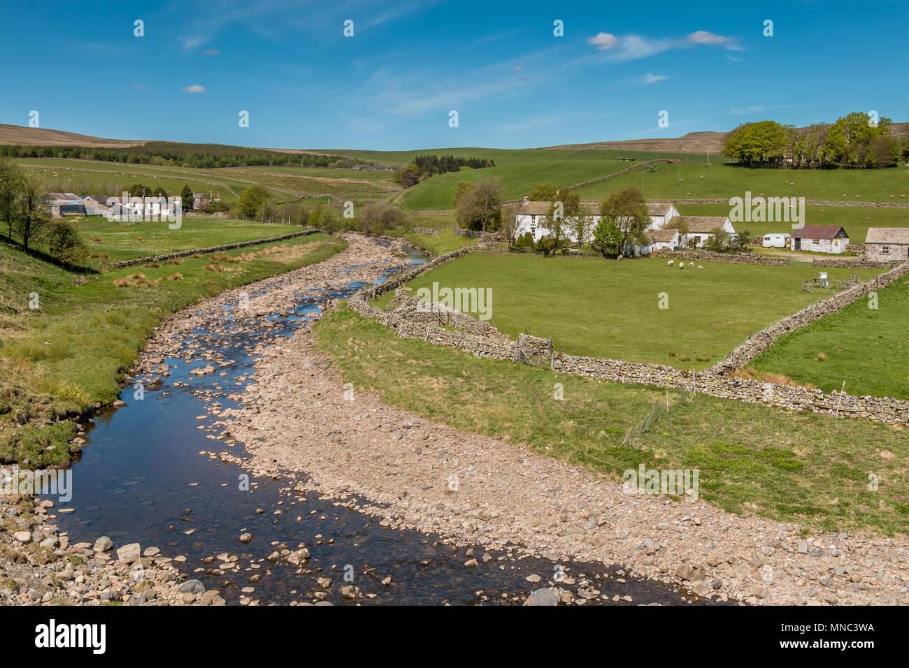 North Pennines landscape, whitewashed farms and Harwood Beck near Langdon Beck, Upper Teesdale, UK - Stock Image