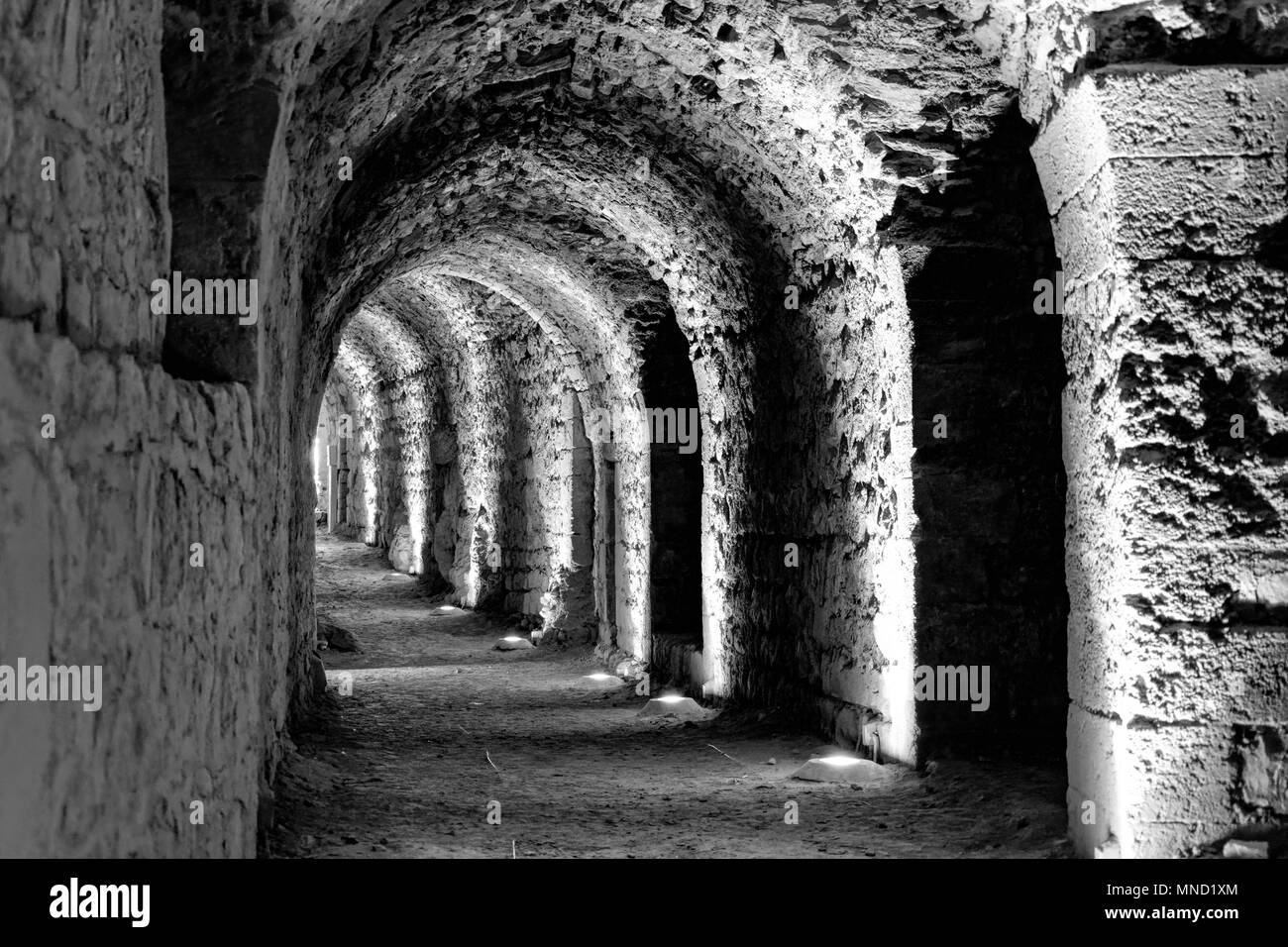 Arabic Culture Black and White Stock Photos & Images - Alamy