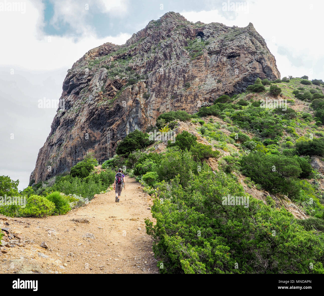 A female walker approaching Roque el Cano a basalt volcanic plug high above the little town of Vallehermoso on La Gomera in the Canary Islands - Stock Image