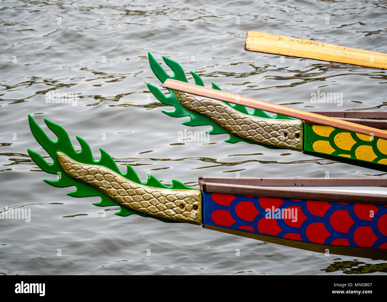 Decorated tails of dragon boats on Bristol floating harbour where teams of amateur rowers race to raise money for charity Bristol UK - Stock Image